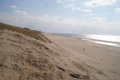 Super Strand